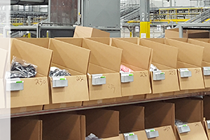 Beyond Conveyors: Conveying a Quality Solution